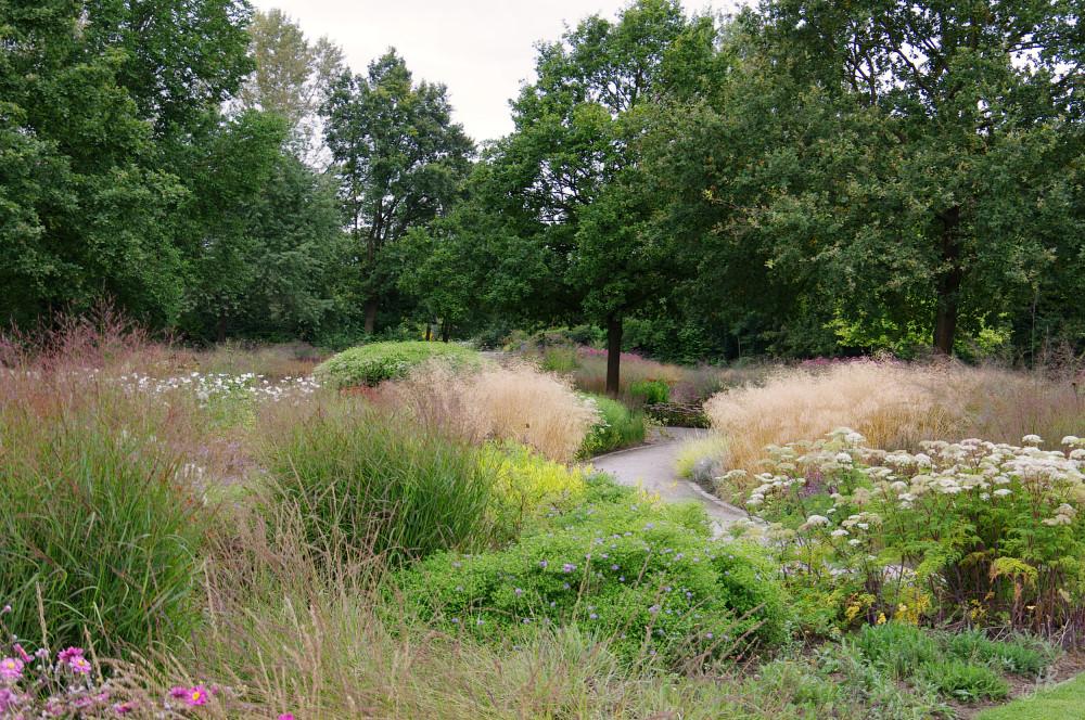 Stauden ein garten in rheda for Piet oudolf pflanzen