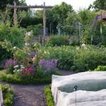 Der Gemüsegarten Anfang Juni 2012