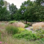 Staudenpflanzung von Piet Oudolf im Maximilianpark Hamm