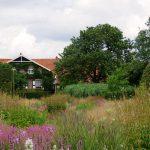 Privatgarten Anja und Piet Oudolf in Hummelo