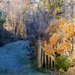Winterliche Gartenansicht