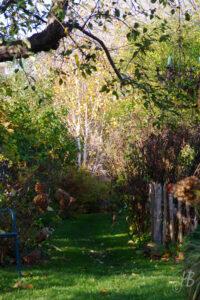 Sichtachse im Garten