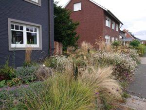 Vorgarten im zweiten Herbst